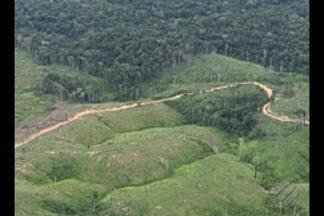 O MPF do Amapá pediu a suspensão imediata do decreto para exploração mineral da Renca - Decreto libera a exploração mineral em uma área de 4 milhões de hectares de floresta na divisa entre os estados do Pará e Amapá.