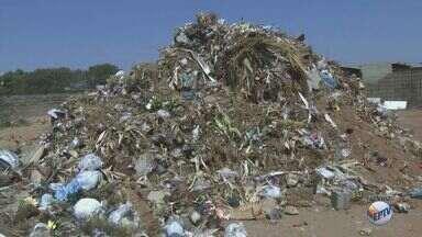 Lixo acumulado perto de cemitério gera queixas de moradores em São Carlos, SP - Local pode ter criadouros do aedes Aegypti e escorpiões.