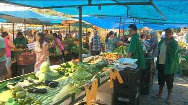Bandido faz arrastão em uma feira no bairro das Malvinas, em Campina Grande - O assalto foi no início da manhã e vários comerciantes foram vítimas.