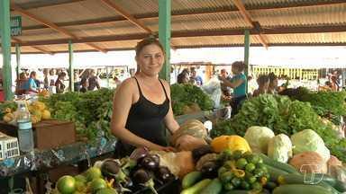Carisma e bom atendimento são itens de concorrência em feiras e mercados - Com tantos tipos de produtos alimentícios, o bom atendimento é o diferencial para garantir freguesia.