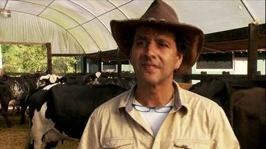 Zelito Viana produz orgânicos por influência do filho Marcos Palmeira - Cineasta se dedica à produção de cacau biodinâmico e queijos de leite de búfala no sul da Bahia. Lá, o gado também é tratado com homeopatia.