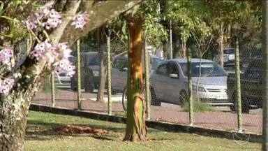Dupla assalta três pessoas no Parque da Águas, em Resende, RJ - Suspeitos levaram três celulares e conseguiram fugir. Crime aconteceu próximo ao Posto da Guarda Municipal do parque.