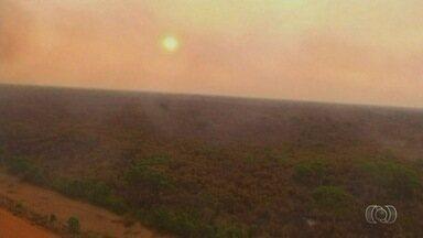 Fogo atinge reservas ambientais em Goiás - Só em setembro, o Corpo de Bombeiros registrou quase 1 mil ocorrências.