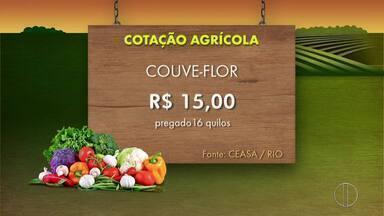 Confira a Cotação da Cana-de-açúcar, Agrícola e Pescados desta semana - Assista a seguir.
