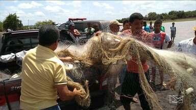 Polícia realiza operação em combate a pesca predatória no MA - Houve prisões no município de Pindaré-Mirim e os peixes capturados irregularmente foram apreendidos.