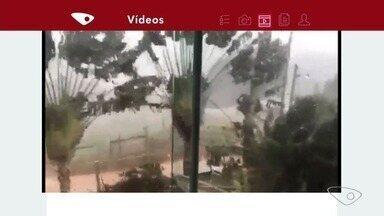 Chuva de vento mostra destruição em Domingos Martins, ES - Ventania derrubou árvores e destelhou parte de uma casa.