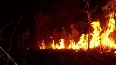 Setembro é mês com mais incêndios nos últimos 20 anos, revela Inpe - Fantástico foi a pontos mais críticos para mostrar devastação de queimadas. Veja também a luta de quem se arrisca para conter o avanço do fogo.