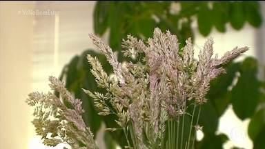 """Com a chegada da primavera, as flores podem ser um problema para quem tem alergia - O """"inimigo"""" pode entrar no ar ou escondido dentro de casa e deixa as pessoas com os olhos vermelhos e inchados. O ácaro já é um velho conhecido e, na primavera, as flores se tornam um problema."""