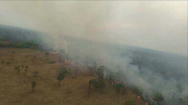 Incêndio é combatido com ajuda de helicóptero na região de Barrolândia - Incêndio é combatido com ajuda de helicóptero na região de Barrolândia