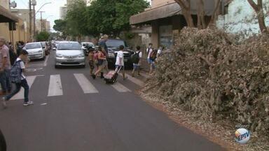 'Até Quando' cobra limpeza perto de escola no bairro Santa Cruz em Ribeirão Preto - Sujeira incomodava moradores que passavam pelo local.