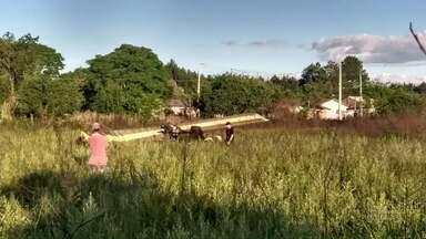 Piloto de ultraleve faz pouso forçado em União da Vitória - O piloto disse que tentou voltar ao aeroporto, mas não conseguiu.