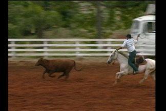 Quinto Rodeio Clube do Laço de Santa Rosa, RS - O evento com várias provas vai até domingo.