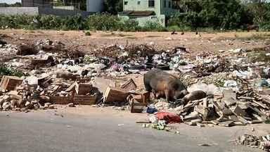 Entulhos nas ruas de Campos, RJ, causam transtorno para moradores - Assista a seguir.