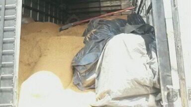 Polícia Militar recupera carga de ração que havia sido roubada, em Campanha (MG) - Polícia Militar recupera carga de ração que havia sido roubada, em Campanha (MG)