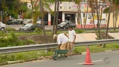 Mutirão reúne mil pessoas para limpar estragos após temporal em Campinas - Desde 2003, pelo menos seis pessoas morreram em enxurradas que se formaram após temporais na cidade.