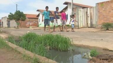 Em Rondônia, órgãos se unem em ação de combate ao mosquito da dengue - Trabalho ocorre em JI-Paraná.