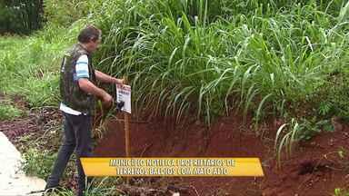 Prefeitura notifica donos de terrenos baldios - Serão notificados e multados proprietários de lotes com mato alto.