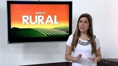Projeto de lei que cria política estadual de aquisição de alimentos é discutido na Alerj - Assista a seguir.