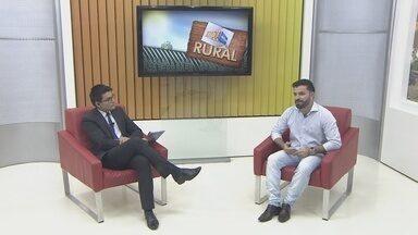 Estado começa a comprar alimentos produzidos pelo pequeno produtor - O Programa de Aquisição de Alimentos é executado em Rondônia pela Emater e pela Secretaria de Agricultura.