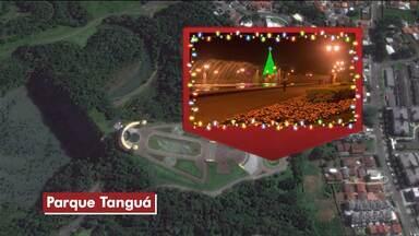 Confira as principais atrações de Natal para Curitiba e Região Metropolitana - A maior árvore de Natal da capital fica no Parque Barigui.