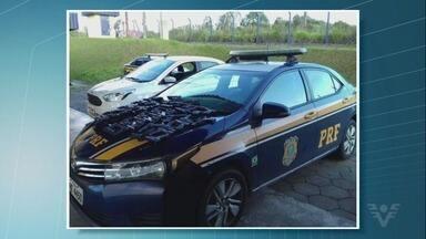 PRF apreende quase 50 armas falsas no Vale do Ribeira - Apreensão ocorreu em Barra do Turvo.
