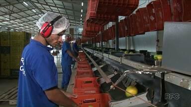 Indústria foi a que mais contratou em Paranavaí - Cidade é um dos 10 municípios do Estado que mais gerou empregos em 2017