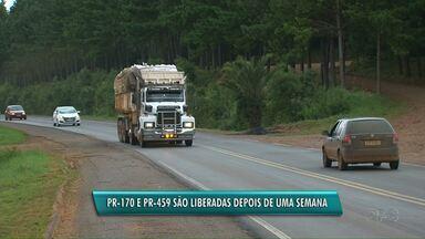 Manifestantes liberam rodovias da região e invadem terras na comunidade Alecrim, em Pinhão - As 14 famílias que foram despejadas na semana passada, voltaram para as terras. Empresa dona da área diz que vai pedir uma nova reintegração.