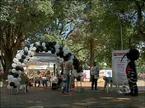 Agentes conscientizam a comunidade para o combate da dengue em Passo Fundo, RS - Atividade aconteceu na Praça Tochetto, no centro da cidade