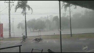 Moradores registram tempestade de granizo em Amparo - Além da chuva, três árvores caíram e houve pontos de alagamento em ruas da cidade.