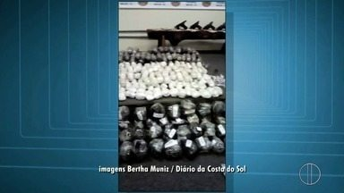 Polícia apreende 96 Kg de maconha e 45 Kg de cocaína em Macaé, no RJ - Três pessoas foram presas na ação conjunta da Polícia Federal e da PM.