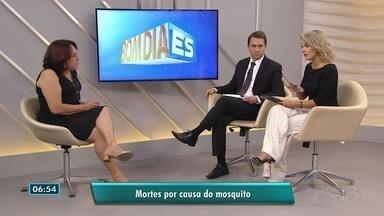 Secretaria de Saúde investigas novas mortes por dengue ou febre amarela no ES - A gerente de vigilância em saúde Gilsa Rodrigues fala sobre as mortes causadas pelo mosquito e o combate ao aedes aegypti.