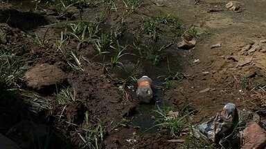 Esgoto e buracos toma conta de uma rua em Juazeiro do Norte - Secretaria de Infraestrutura da cidade vai enviar técnicos para o local.