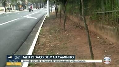 Calçada em volta do Parque do Carmo tem mato alto - Frequentadores reclamam da situação.