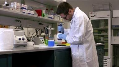 Pesquisa aposta na biopsia líquida para diagnóstico precoce do câncer - Cientistas da universidade Johns Hopkins conseguiram diagnosticar com exames de sangue oito tipos diferentes de câncer.