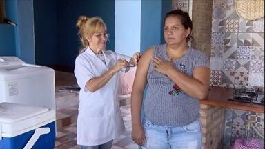 Agentes de saúde reforçam vacinação contra a febre amarela na zona rural de MG - Em Divinópolis, centro-oeste do estado, a maior dificuldade dos agentes é saber quem realmente já foi vacinado. A preocupação na região aumentou depois que um homem morreu de febre amarela em Carmo da Mata.