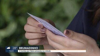 Inhotim começa a exigir cartão de vacina para comprovar imunização contra febre amarela - A Prefeitura de Brumadinho, onde fica o centro de arte, divulgou hoje informações sobre a doença na cidade.