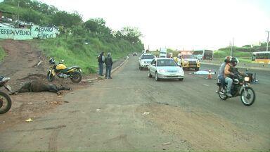 Cavalo solto provoca acidente com morte na PR-445 - O motociclista estava indo trabalhar quando um cavalo cruzou a pista. Os dois morreram no local.