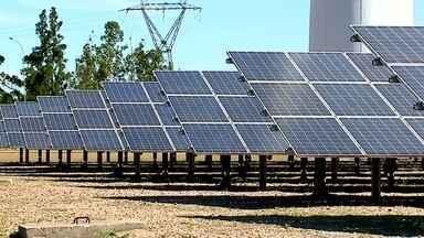 Consumo de energia renovável é prioridade em Santa Catarina - Noventa por cento da energia consumida no estado é oriunda do vento, do sol e da água.