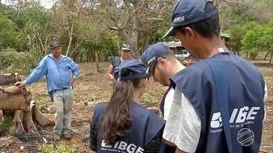 IBGE divulga balanço parcial do Censo Agropecuário de MS - As chuvas e a ausência de grandes produtores nas fazendas têm dificultado o trabalho dos profissionais.