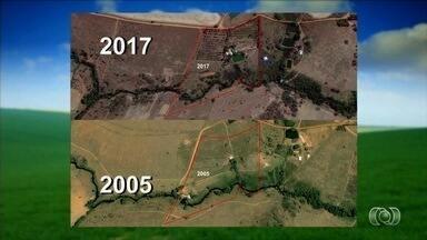 Produtor investe em reflorestamento para recuperar ribeirão que passa por fazenda - Propriedade em Anápolis mudou nos últimos dez anos.