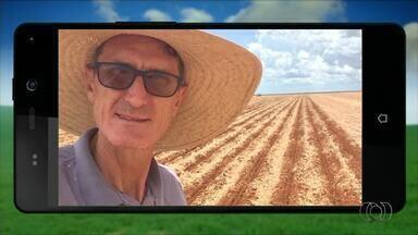Veja as plantações de telespectadores no 'QVT do Campo' - Veja as plantações de telespectadores no 'QVT do Campo'