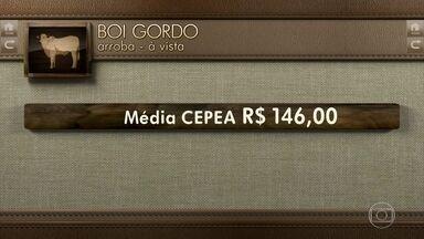 Globo Rural: cotações - Veja os preços do boi gordo e do café