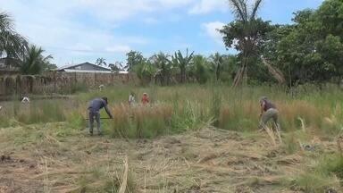 Em Tabatinga, grupo de voluntários precisa de ajuda para atender dependentes químicos - Por lá, não existe nenhum serviço de reabilitação oferecido pelo estado e muitas famílias sofrem com o problema das drogas