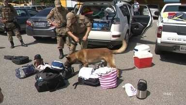 PRF prende em SC policial militar do MS com 104 quilos de crack - PRF prende em SC policial militar do MS com 104 quilos de crack