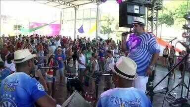 Rio das Flores, RJ, tem carnaval puxado por 'jegue elétrico' - Confira o que rolou na folia da cidade. Teve até quem se fantasiou de 'febre amarela'.