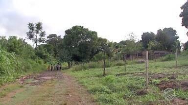 Moradores reclamam da falta de infraestrutura em bairro de Campo Grande - No Jardim Colúmbia, a principal reclamação é situação das ruas.