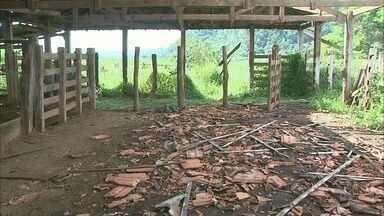Roubos e furtos na zona rural assustam moradores na região de Buritizal, SP - Dono de um sítio diz que a propriedade já foi invadida sete vezes em 2018.