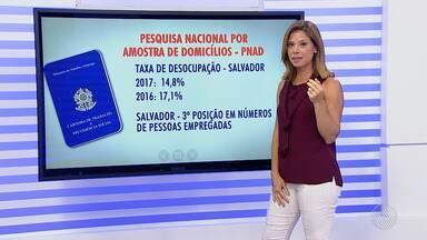 Taxa de desocupação em Salvador cai 2,3% em relação ao ano de 2016 - Os dados são da pesquisa feita pelo PNAD no ano de 2017 que apontou a capital baiana com a terceira posição no ranking das cidades que geram mais emprego depois de São Paulo e o Rio de Janeiro.