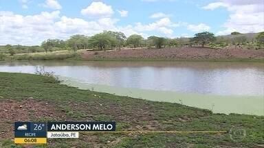 Chuva no Agreste melhora situação de reservatórios e anima agricultores - Moradores festejam as precipitações na região de Jataúba.