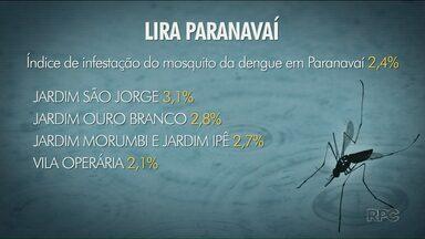 Índice de infestação do mosquito da dengue continua alto em Paranavaí - índice geral do segundo Lira foi de 2,4%. A cada 100 imóveis visitados, 24 foram tinham larvas do mosquito.
